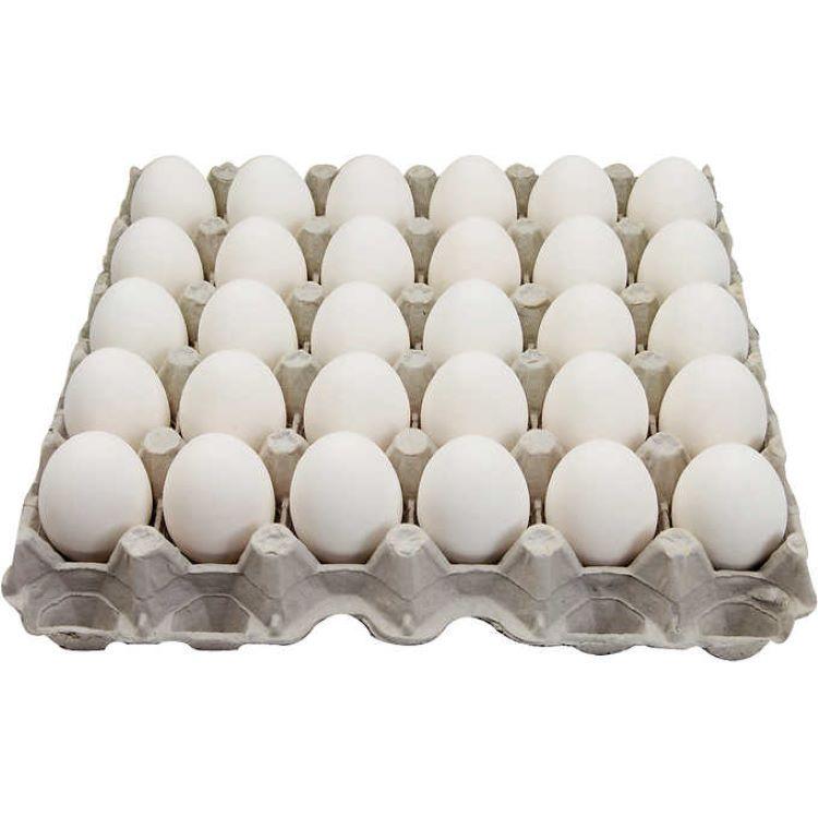 【秒杀】新鲜白皮鸡蛋(中号)  30枚/板  10.16